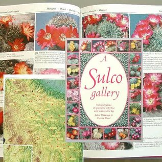 A sulco gallery John Pilbeam und David Hunt
