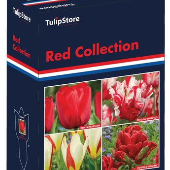 Red Collection Gift Box