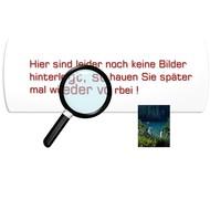 Piezo-Signalgeber für Tisch-Winkelschweißgerät TW 330/401H  (1 VE = 1 Geber)
