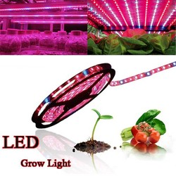 J&S Supply Kweeklamp LED Strip