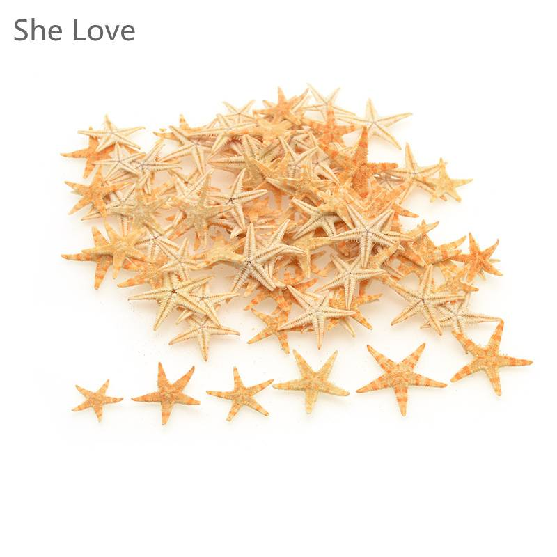 100 stks Mini Zeester Craft Decoratie Natuurlijke Zee Sterren DIY Strand Cottage Wedding Decor