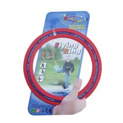 MyXL 9.8 inch Sporting Vliegende Schijf Disc Grote Frisbee Onderwijs Outdoor Speelgoed Klassieke Ring VormOnderwijs Speelgoed
