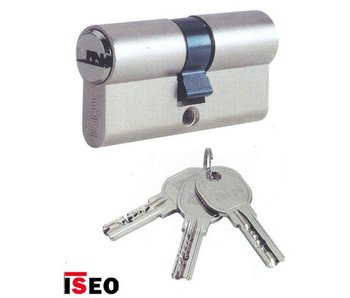 Iseo Iseo R6 ** ® security cylinder