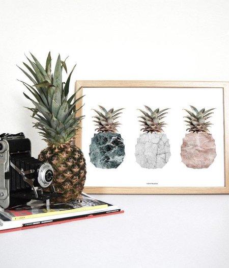 Vontrueba Pineapples / Ananassen - poster