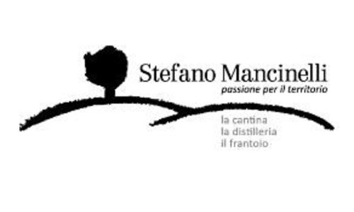Stefano Mancinelli