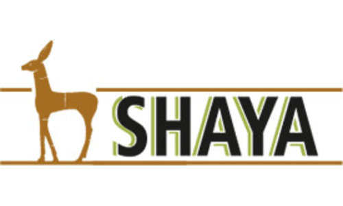 Bodega Shaya