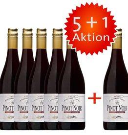 Winzerkeller Laufener Altenberg 6 x Pinot Noir Rotwein 0,75 L zum Preis von 5, Qualitätswein, trocken. 5+1 Weinangebot