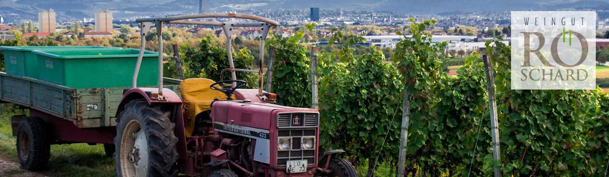Weingut Röschard