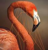 Lé Papiers de Ninon Poster Flamingo roze