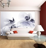 Dutch Wallcoverings AG Design Orchids 4D