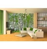 Dutch Wallcoverings AG Design Berry Birch 4D