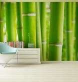 Dutch Wallcoverings AG Design Bamboo 4D