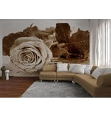 Dutch Wallcoverings AG Design Black & White Rose 4D