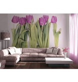 Dutch Wallcoverings AG Design Violet Tulips Big 4D