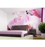 Dutch Wallcoverings AG Design Violet Orchid Big 4D