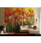 Dutch Wallcoverings AG Design Tulip Big 4D