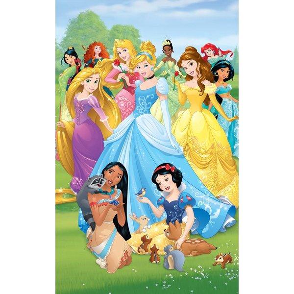 Dutch Wallcoverings Walltastic Disney Princesses 6 delig