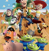 Dutch Wallcoverings Walltastic Toy Story 6 delig