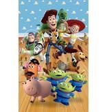 Dutch Wallcoverings Walltastic Toy Story 6 delig