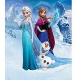 Dutch Wallcoverings Walltastic Disney Frozen 8 delig