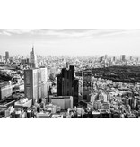 Dutch Wallcoverings City Love Tokyo z/w 9-d