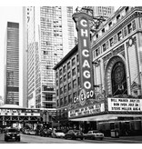 Dutch Wallcoverings City Love Chicago z/w 6-d