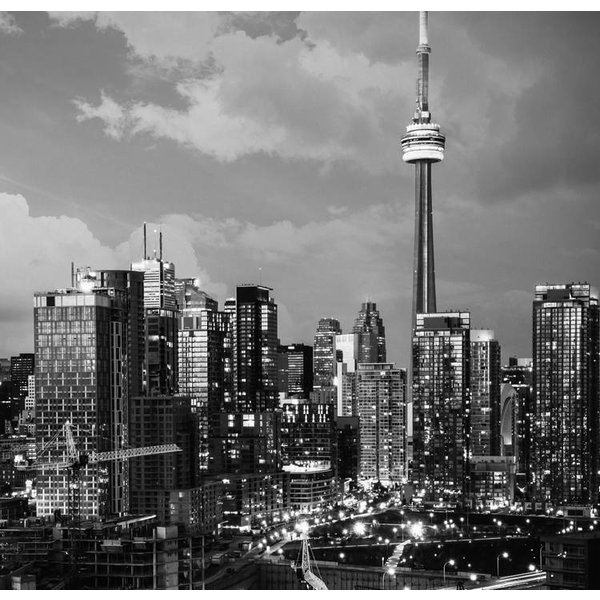 Dutch Wallcoverings City Love Toronto z/w 6-d
