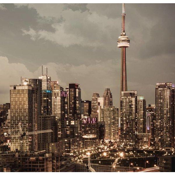 Dutch Wallcoverings City Love Toronto 6-d