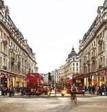 Dutch Wallcoverings City Love London 9-d