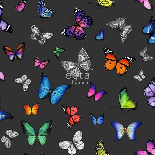 Brooklyn Bridge Vlinders kleurrijk op zwart
