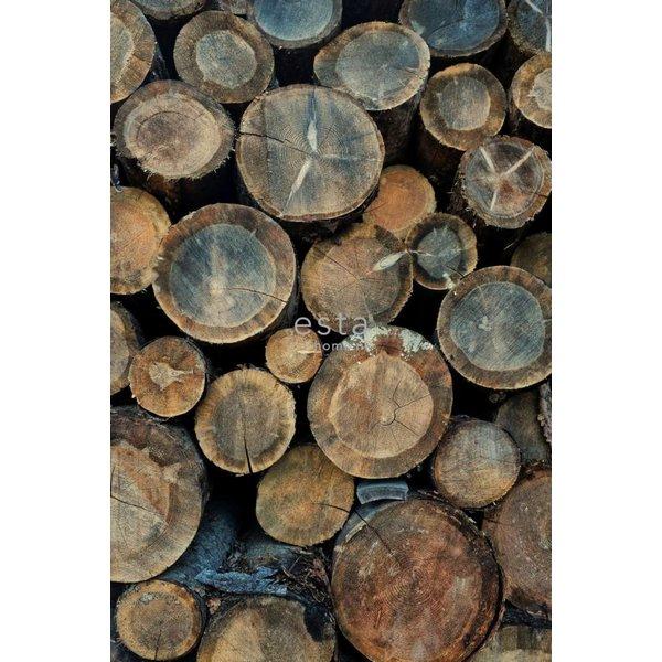 Esta Home Brooklyn Bridge PhotowallXL Wood logs 158206