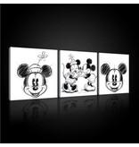 Dutch Wallcoverings Canvas set Disney Mickey 2447S13