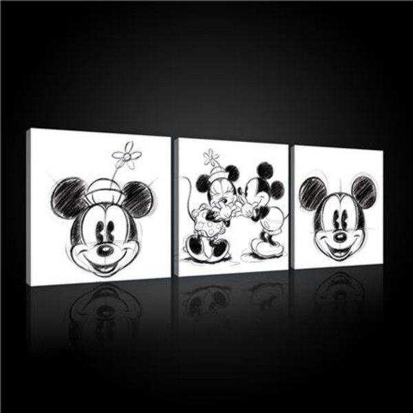 Dutch Wallcoverings Canvas set Disney Mickey 2447S13