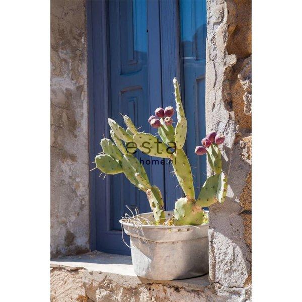 Esta Home Cabana PhotowallXL Cactus mural 158610