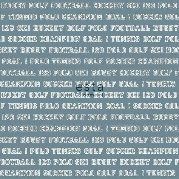 College Sport teksten vintage blauw