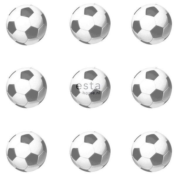College Voetballen zwart & wit