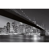 Dutch Wallcoverings Wizard & Genius fotobehang Brooklyn Bridge 00140