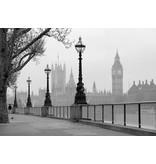 Dutch Wallcoverings Wizard & Genius fotobehang London fog 00142