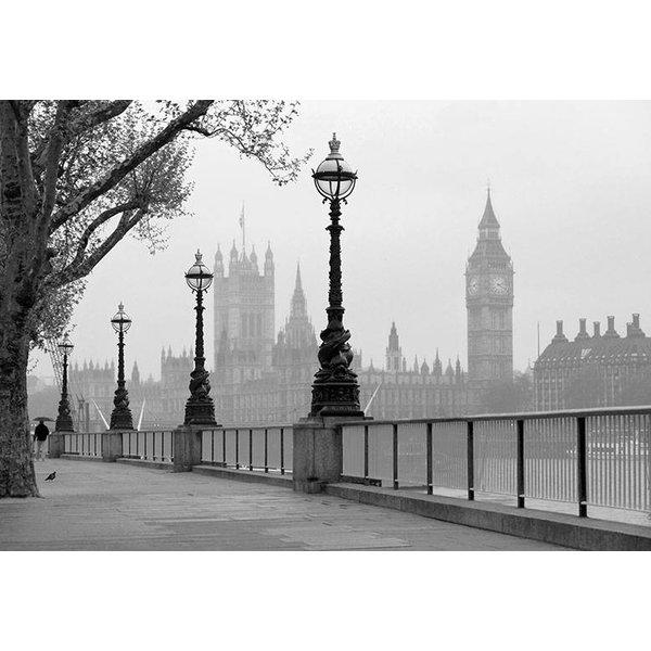 Dutch Wallcoverings Wizard & Genius fotobehang London fog