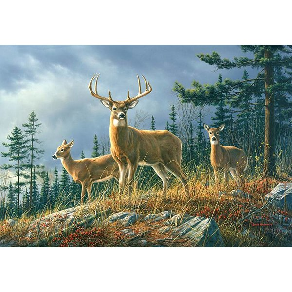Dutch Wallcoverings Wizard & Genius fotobehang Autumn Whitetails