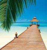 Dutch Wallcoverings Wizard & Genius fotobehang Paradise beach 00284