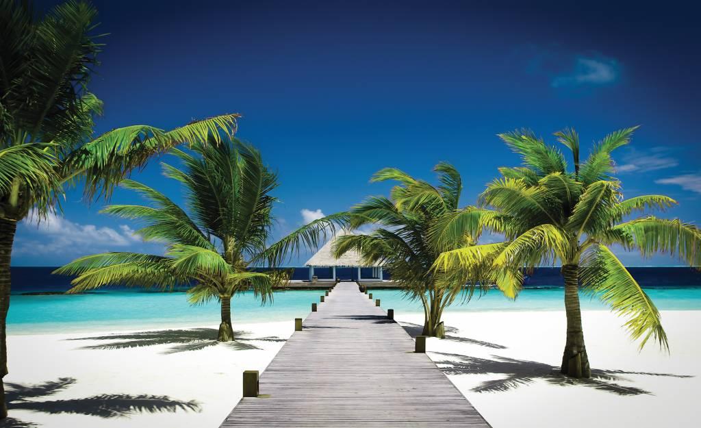 Home / Fotobehang / Fotobehang Natuur / Fotobehang Tropisch strand