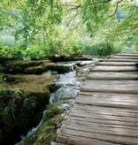 Dutch Wallcoverings Fotobehang Waterval in het bos