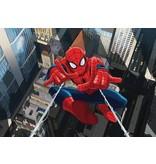 Dutch Wallcoverings Fotobehang Spiderman van boven