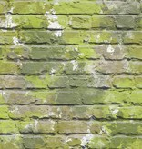 Dutch Wallcoverings Freestyle Bakstenen Graffiti - Groen L335-04