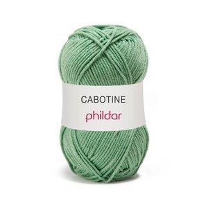 Phildar Cabotine Feuille (30)