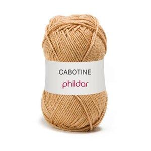 Phildar Cabotine Kraft (27)
