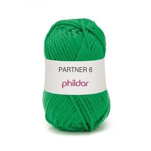 Phildar Partner 6 Billard (41)
