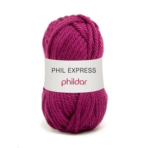 Phildar Phil Express Pensee (6)