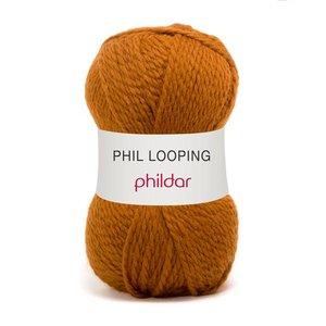 Phildar Phil Looping Ecreuil (6)